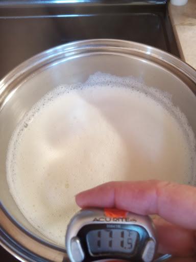 checking the temperature of the yogurt